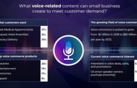 How to Use Voice Assistants For Your Business